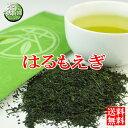 鹿児島茶・はるもえぎ 80g緑茶 煎茶 メール便(DM便)送料無料(am-10)