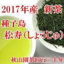 新茶【2017】種子島・松寿(しょうじゅ) 50g 緑茶 煎茶(am10)