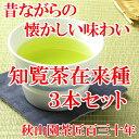 知覧茶在来種 80g×3本セット 緑茶 煎茶 メール便(DM便)送料無料(am-m)(鹿児島茶 緑茶 茶葉 煎茶)