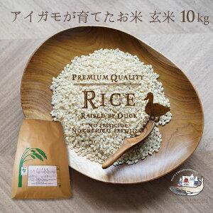 定期購入 新米 令和2年産 アイガモ米 玄米10kg 農薬や化学肥料を一切使わない栽培方法のコシヒカリ100% あいがも米 合鴨米 合鴨農法