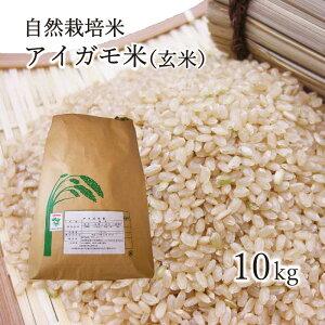 【送料無料】新米 令和元年産 アイガモ米 玄米10kg 農薬や化学肥料を一切使わない栽培方法のコシヒカリ100% あいがも米 合鴨米