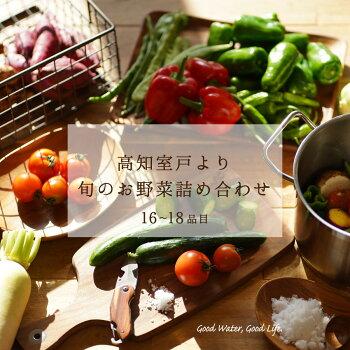 野菜旬のお野菜詰め合わせ16品目から18品目高知県産新鮮野菜詰め合わせ送料無料毎週火曜日と金曜日に高知県室戸市から直送出荷