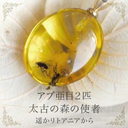 【天然琥珀】【musi162】虫入り琥珀 こはく ネックレス【コレクションランク】【インターナショナルアンバー協会認定正規品】【パワーストーン】