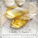【天然琥珀】【こはくピアス】【musi296】【コレクションランク】【虫入り琥珀】【ユスリカ・シギアブ】【パワーストーン】