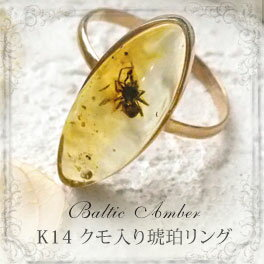【天然琥珀】【琥珀リング・指輪】【K14・14金】【クモ・虫入りこはく】【musi321】【インターナショナルアンバー協会認定正規品】【パワーストーン】