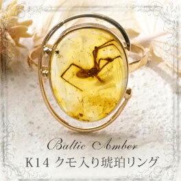 【天然琥珀】【琥珀リング・指輪】【K14・14金】【クモ・虫入りこはく】【musi326】【インターナショナルアンバー協会認定正規品】【パワーストーン】