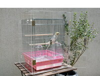 アクリルバードケージ[スリムタイプ]W400×H430×D450[オウム・鳥・小動物用アクリルケージ]アクリルケース国産透明アクリル板製作10P05Sep15