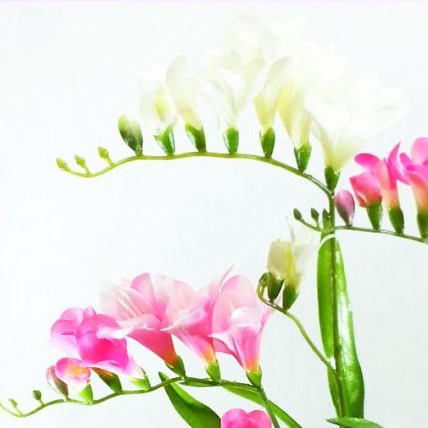 【造花・春】フリージア / ディスプレイ・素材 FS-7763 / FS-7790