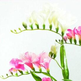 【造花・春】フリージア / ディスプレイ・素材|FS-7763 / FS-7790