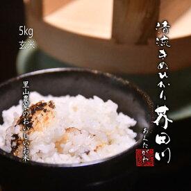 令和3年度 新米 予約生産 お米 5kg 玄米 清流きぬひかり芥田川 送料無料 農家直送