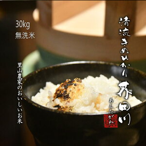 新米 お米 30kg 無洗米精米 清流きぬひかり芥田川 里山農家のおいしいお米【送料無料 令和2年産新米】