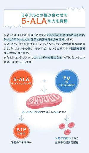 5-ALAサプリメント(60粒)【5-ALA50mg入り高配合】【送料無料】【5-アミノレブリン酸(5-ALA)】