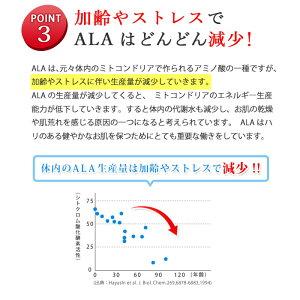加齢やストレスでALAはどんどん減少