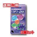 【送料無料】湧永製薬 プレビジョン ビルベリー&DHA 120粒 3個セット(ディーエイチエー 120錠)