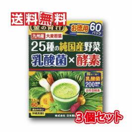 【送料無料】日本薬健 金の青汁 25種の純国産野菜 乳酸菌×酵素 3.5g×60包【3個セット】
