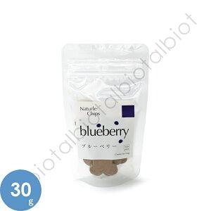 ナチュールチップス ブルーベリー 30g