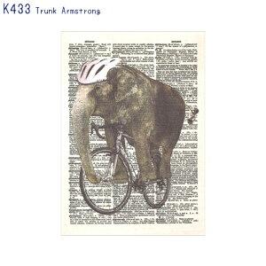アーティストのイラストがプリントされたポストカードTrunk Armstrong (K433)(メール便(ネコポス)発送OK)