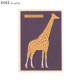 アーティストのイラストがプリントされたポストカードGiraffe (K443)(メール便(ネコポス)発送OK)