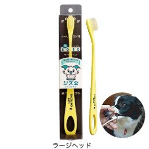 愛犬用歯ブラシシズ公 ラージヘッドソフトタイプ