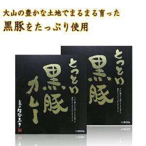 鳥取 黒豚カレー(220g)×2 高級 レトルト カレー 国産豚 送料無料 【ゆうパケット】