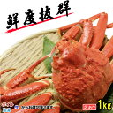 松葉ガニ ズワイガニ 生 ボイル 冷凍 選択可能 境港 お正月用 かに 訳あり 蟹 1.0kg前後 国産 送料無料 ギフト 贈答に 焼きガニ カニすき 産地直送 ずわい蟹 越前がに