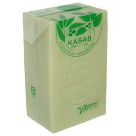 カサブ石鹸【アレッポの石鹸職人からの贈り物 無添加 アレッポ石鹸】