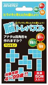 パズルゲーム BEV-NT-006 IQパズル 脳トレパズル ペントミノ