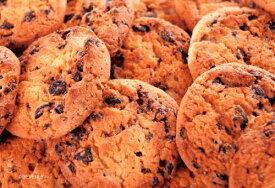 ジグソーパズル BEV-M108-194 Candy Collection チョコチップクッキー [CP-HW][CP-HW] パズル Puzzle マイクロピース ギフト 誕生日 プレゼント 誕生日プレゼント