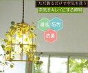 エントリーでポイント17倍! 【キシマ】【照明】 Botanic ボタニック ペンダントライト (シーリングカバーあり) 【アリスの時間】★【…