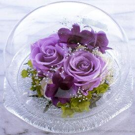 【プリザーブドフラワー】紫の薔薇・パープルメモリードーム・ガラスドーム 濃淡紫のレイヤー ほこりが付かない ギフト 誕生日 記念日 サプライズ 送料無料