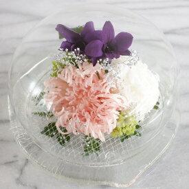 【プリザーブドフラワー】優しい想い出・ガラスドーム レアで生花のようなフレッシュ感に満ちた ふんわりと優しくエレガント ほこりが付かない ギフト 誕生日 記念日 サプライズ 送料無料