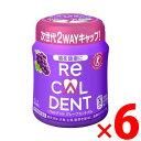 リカルデント グレープミントガム ボトル 140g×6個セット(4547894198353)