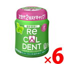 リカルデント グリーンミントガム ボトル 140g ×6個セット(4547894198346)