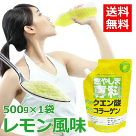 燃やしま専科 500g レモン風味 スポーツドリンク 粉末 パウダー 粉 クエン酸 ドリンク ダイエット サプリメント マルチビタミン 500ml 送料無料