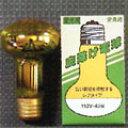 ☆アサヒ 虫除け電球 40W(被膜なし・屋内用) E26口金