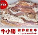 【業務用】牛小腸 ホルモン5kg! メガ盛り