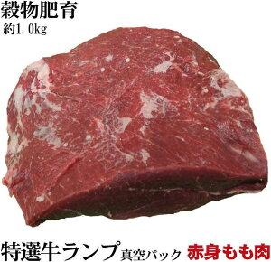 特選穀物肥育牛もも肉 ランプブロック 大容量約1kg お歳暮にも大好評