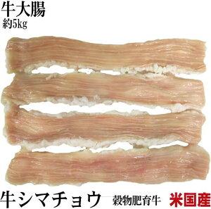 業務用 牛大腸 1ケース販売 約5kg  シマ腸 テッチャン【冷凍】