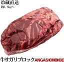 業務用 量り売り 冷蔵 ブラックアンガス・チョイス 極上ハラミサガリブロック 約1.8kg〜