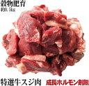 牛スジ肉  約500g 安心安全成長ホルモン剤未使用の穀物肥育牛 サーロイン ランプ等使用