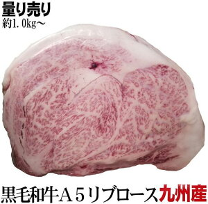 九州産黒毛和牛 量り売り A5リブサーロインブロック 約1kg前後 個体差有  かたまり