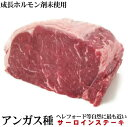 『抗生物質使用0』穀物肥育牛 ホルモンフリー 牛サーロインブロック 約1kg前後  業務用