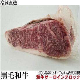 冷蔵直送 業務用 黒毛和牛サーロインブロック  約6kg前後 量り売り