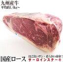 九州産牛サーロインステーキブロック 量り売り 約1.0kg前後 ブロック肉  かたまり