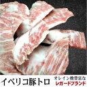 イベリコ豚  トントロ  高品質レガードブランド お試し 1パック約400g〜 少量 真空パック 量り売り