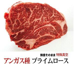 塊肉 柔らかいとこだけ 約1.0kg前後 特選ロースステーキブロック 最高品質アンガス種『プライム』