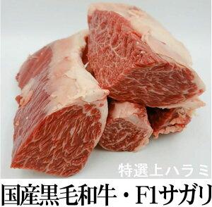 数量限定 お試し量り売り 国産黒毛和牛・F1特上はらみサガリ 1ブロック約0.3kg〜【冷凍】