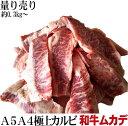 【量り売り】九州産黒毛和牛A5・A4等級希少カルビ【ムカデ】!焼肉屋さんに卸している「業務用」です! 1パック2枚で…