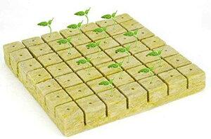 Yuki 50Pcs 家族の植栽ロックウールシートバルコニーガーデニング無土壌栽培水耕栽培25 * 25 * 40 MM農業温室バッチ苗床火災