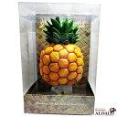 ハワイアンインテリア ハワイ雑貨 ナイトランプ レジン パイナップル 上品に光る リゾートランプ プレゼント 引越祝い